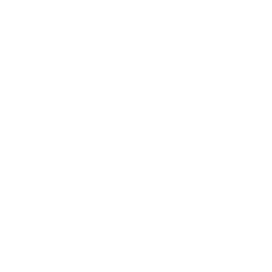 Bikes N' Brains